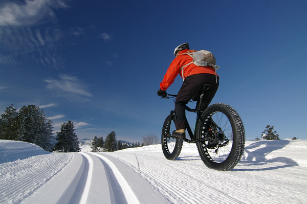 Fat Tire Biking